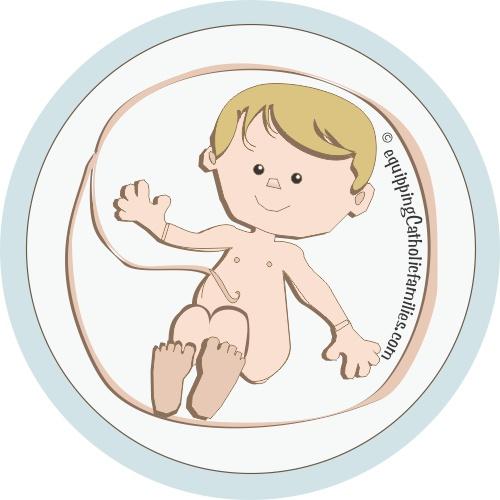 St Unborn 2